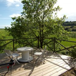 V5049HT Farmhouse near Pisa with Wine Production for sale - 1200 (18)