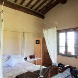 V5049HT Farmhouse near Pisa with Wine Production for sale - 1200 (2)
