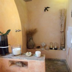 V5049HT Farmhouse near Pisa with Wine Production for sale - 1200 (20)