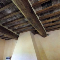 V5049HT Farmhouse near Pisa with Wine Production for sale - 1200 (22)