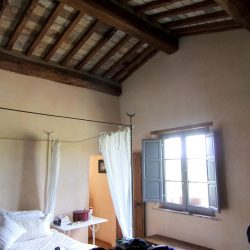 V5049HT Farmhouse near Pisa with Wine Production for sale - 1200 (23)