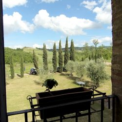 V5049HT Farmhouse near Pisa with Wine Production for sale - 1200 (26)