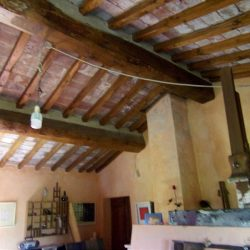 V5049HT Farmhouse near Pisa with Wine Production for sale - 1200 (31)