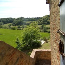 V5049HT Farmhouse near Pisa with Wine Production for sale - 1200 (33)