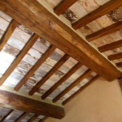 V5049HT Farmhouse near Pisa with Wine Production for sale - 1200 (36)