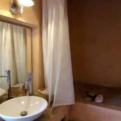 V5049HT Farmhouse near Pisa with Wine Production for sale - 1200 (38)
