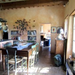 V5049HT Farmhouse near Pisa with Wine Production for sale - 1200 (4)