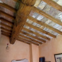 V5049HT Farmhouse near Pisa with Wine Production for sale - 1200 (42)