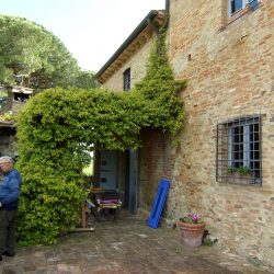 V5049HT Farmhouse near Pisa with Wine Production for sale - 1200 (7)