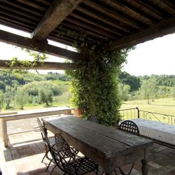 V5049HT Farmhouse near Pisa with Wine Production for sale - 1200 (9)