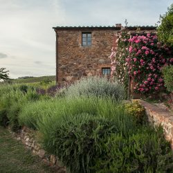 V5063AB Superb Farmhouse for sale near Montepulciano (31)-1200
