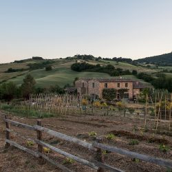 V5063AB Superb Farmhouse for sale near Montepulciano (34)-1200