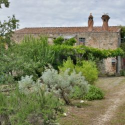 Restored Property for Sale in Umbria image 41