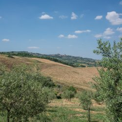 Val D'Orcia Property for Sale (12)