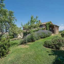 Val D'Orcia Property for Sale (15)