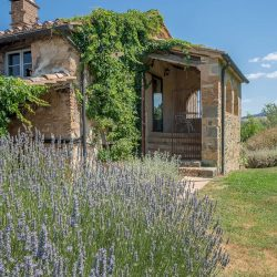 Val D'Orcia Property for Sale (16)