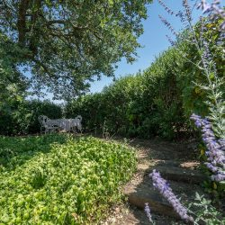 Val D'Orcia Property for Sale (2)