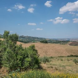Val D'Orcia Property for Sale (28)