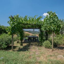 Val D'Orcia Property for Sale (9)