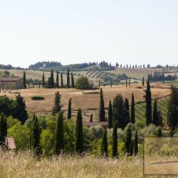 Winery and Agriturismo near Castellina in Chianti 4