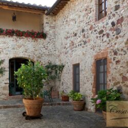 Winery and Agriturismo near Castellina in Chianti 14