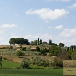 Winery and Agriturismo near Castellina in Chianti 36