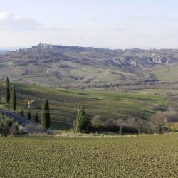 Val d'Orcia Farmhouse with Pool for Sale image 6