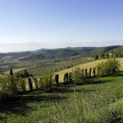 Val d'Orcia Farmhouse with Pool for Sale image 4