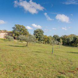 v4004PV Villa near Siena for sale (10)-1200