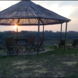 Country House near Lari Image 44