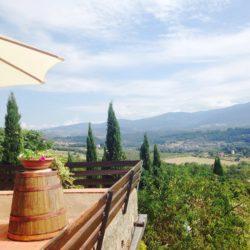 v4157pv Historic Tuscan Estate near Florence - more (7)-1200