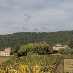 V5274AB winery for sale in Chianti Tuscany