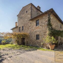 V5274AB winery for sale in Chianti Tuscany 10