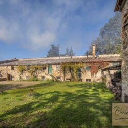 V5274AB winery for sale in Chianti Tuscany 15