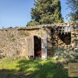V5274AB winery for sale in Chianti Tuscany 9