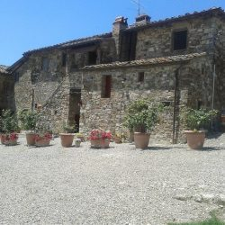 Chianti Farmhouse with Outbuildings and 750 Olives (12)-1200