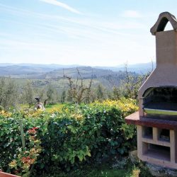 Chianti Farmhouse with Outbuildings and 750 Olives (17)-1200
