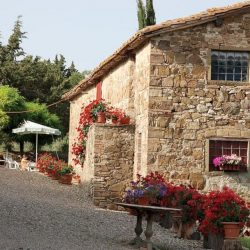 Chianti Farmhouse with Outbuildings and 750 Olives (19)-1200