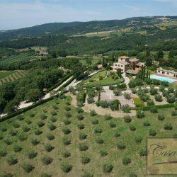 Todi Estate Image