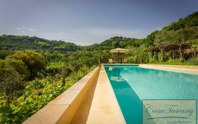Enchanting Rustic Property with Infinity Pool