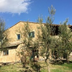 Farmhouse for Sale near Orvieto Image