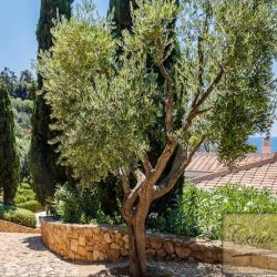 Luxury Porto Santo Stefano Villa for Sale image 30