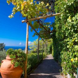 Villa in Porto Santo Stefano for Sale image