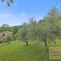 Farmhouse near Citta della Pieve for Sale image 12