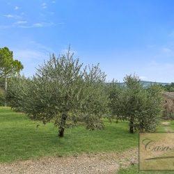 Farmhouse near Citta della Pieve for Sale image 13