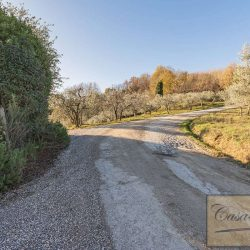 Montepulciano Property for Sale image 7