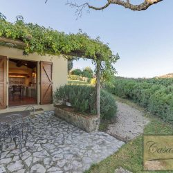 Montepulciano Property for Sale image 6