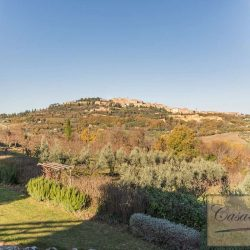 Montepulciano Property for Sale image 42