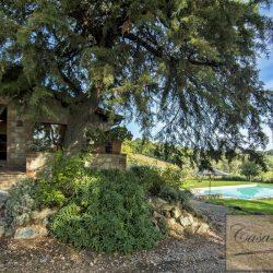 Maremma Farmhouse with Pool for Sale image 5