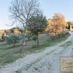 Val d'Orcia Farmhouse for Sale image 8